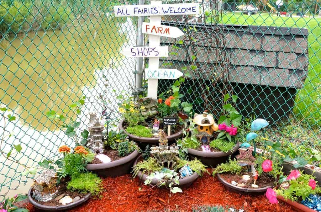 How to make a Fairy Garden on a Budget