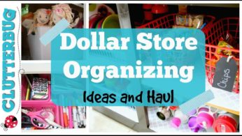 Dollar Store Organizing Ideas and Haul – Collab With Myka Stauffer