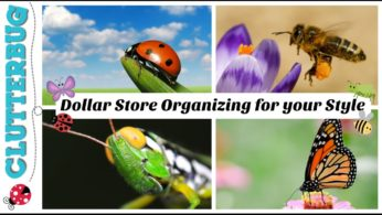 🐝Organizing From The Dollar Store For Your Unique Style 🐞