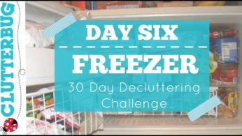 Day Six – The Freezer –  30 Day Decluttering Challenge