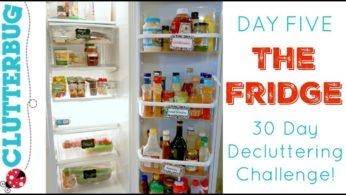 Day Five – Fridge – 30 Day Decluttering Challenge