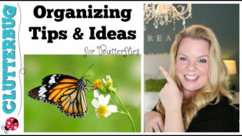 Organizing Tips and Ideas for Butterflies – ClutterBug Organizing Series