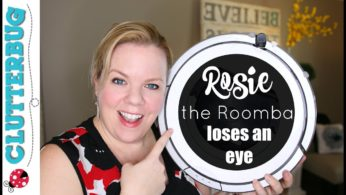 Rosie the Roomba Loses an Eye