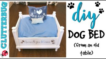 How to Make a DIY Dog Bed from an Old Table