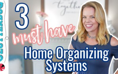 3 MUST HAVE Home Organizing Systems  🤯🤩😍